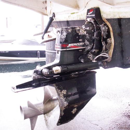 Barnacles-on-Propeller-3